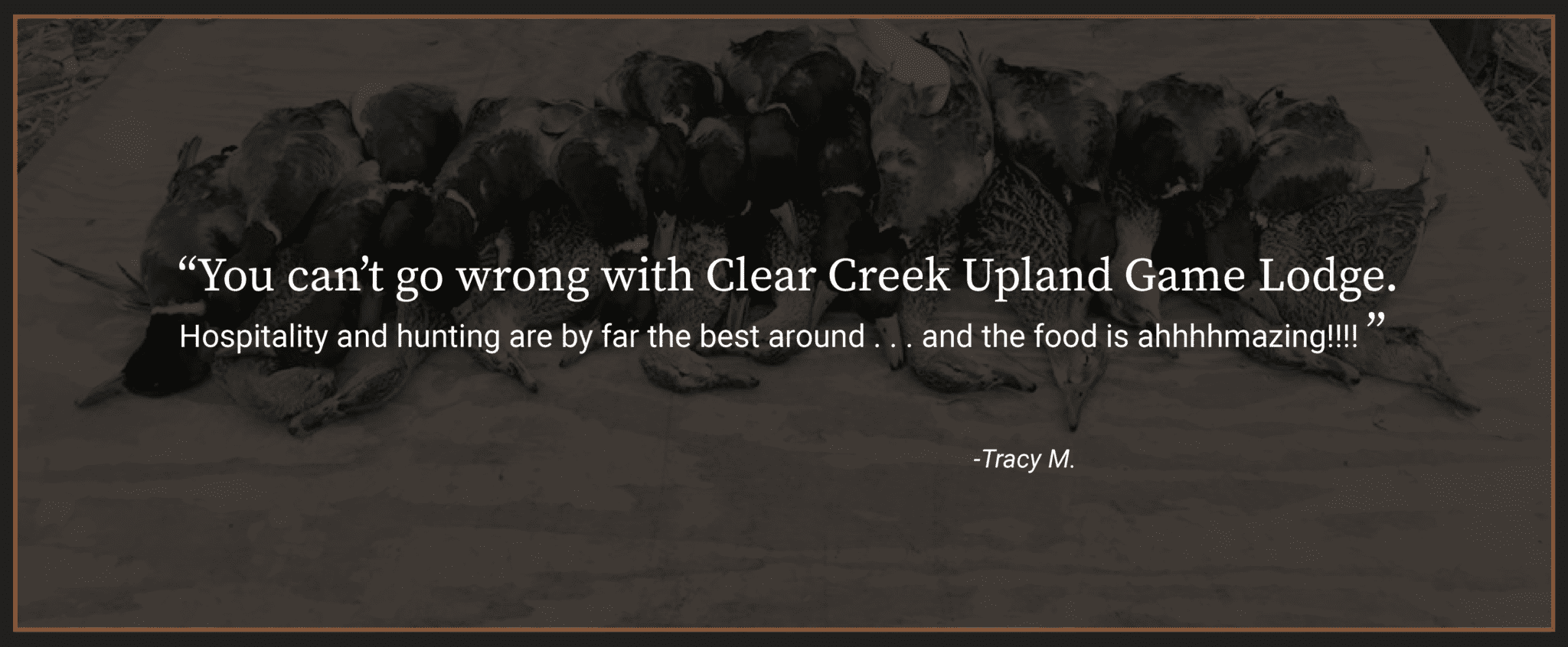 Hospitality and hunting are by far the best around. You can't go wrong with Clear Creek Upland Game Lodge.